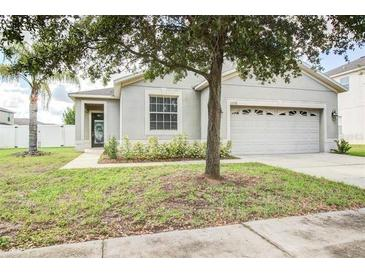 Photo one of 11228 Flora Springs Dr Riverview FL 33579 | MLS U8105526