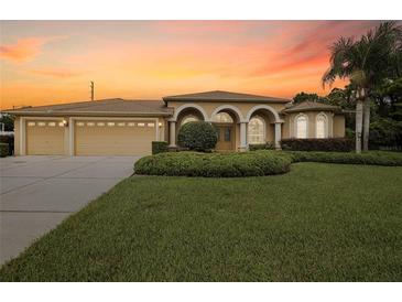 Photo one of 13077 Pastore Ct Spring Hill FL 34609   MLS W7837900