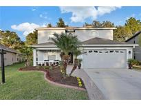 View 3228 Sunwatch Dr Wesley Chapel FL