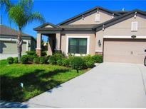 View 11634 Palmetto Pine St Riverview FL