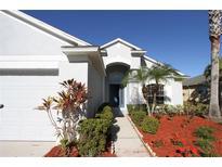 View 11515 Sweetflag Dr Lakewood Ranch FL