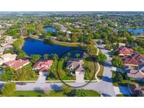 View 13605 Brown Thrasher Pike Lakewood Ranch FL