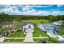 View 11315 Glenmont Dr Tampa FL