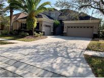 View 20209 Moss Hill Way Tampa FL
