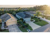 View 4919 Cedar Knoll Pl Parrish FL