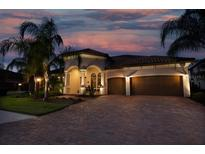 View 13407 Swiftwater Way Bradenton FL