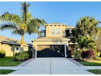 View 6527 Salt Creek Ave Apollo Beach FL