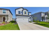 View 4336 Reisswood Loop Palmetto FL
