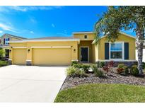 View 118 Brilliant Bloom Ct Bradenton FL