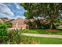 View 4383 Ellinwood Blvd Palm Harbor FL