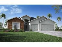 View 4423 Calhoun Rd Plant City FL