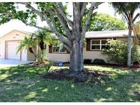 View 4229 Tall Oak Ln New Port Richey FL