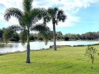 View 3221 Meadow Run Dr Venice FL