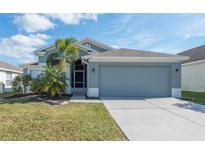 View 12418 Midpointe Dr Riverview FL