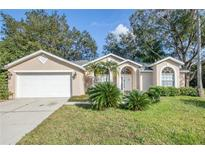 View 16003 Selby Way Tampa FL