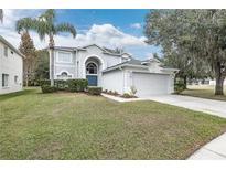 View 10542 Lucaya Dr Tampa FL