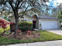 View 8501 Pecan Brook Ct Tampa FL