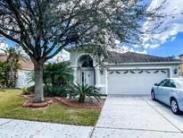 View 1606 Sweetspire Dr Trinity FL