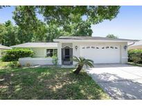 View 14138 Arbor Hills Rd Tampa FL