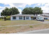 View 7202 Woodbrook Dr Tampa FL