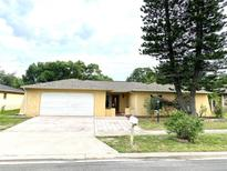 View 10951 Peppertree Ln Port Richey FL