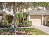 View 19281 Stone Hedge Dr Tampa FL