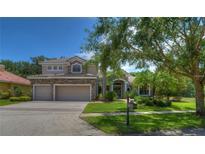 View 9807 Tree Tops Lake Rd Tampa FL
