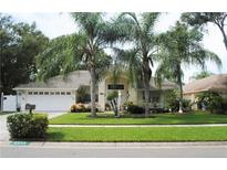 View 6539 Steeplechase Dr Tampa FL