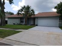 View 10804 Wingate Dr Tampa FL
