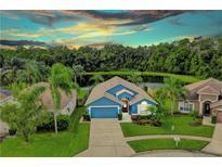 View 12538 Sparkleberry Rd Tampa FL