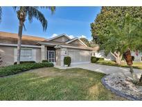 View 2311 Olive Branch Dr Sun City Center FL