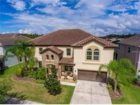 View 19315 Yellow Clover Dr Tampa FL