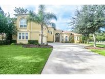 View 6217 Wild Orchid Dr Lithia FL