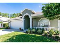 View 12521 Deerberry Ln Tampa FL