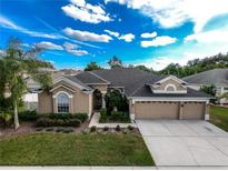 View 21147 Preservation Dr Land O Lakes FL