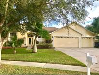 View 9206 Grand Palm Ct Riverview FL