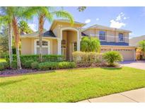 View 17323 Emerald Chase Dr Tampa FL