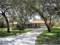 View 12703 Lake Hills Dr Riverview FL