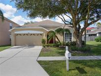 View 18203 Brookpark Dr Tampa FL