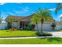 View 11920 Snapdragon Rd Tampa FL