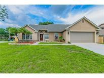 View 10207 Rainbridge Dr Riverview FL