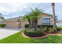 View 9006 N River Rd Tampa FL