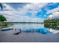 View 3113 Mossvale Ln Tampa FL