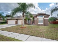 View 12032 Timberhill Dr Riverview FL