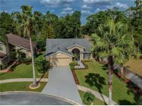 View 11101 Clayridge Dr Tampa FL