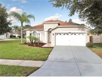 View 18202 Holly Hills Way Tampa FL