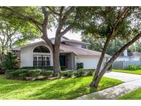 View 429 W Davis Blvd Tampa FL