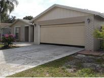View 9206 Roundwood Ct Tampa FL