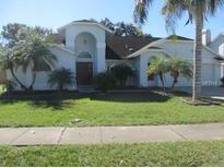 View 5418 Pine Bay Dr Tampa FL