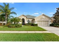 View 14852 Tudor Chase Dr Tampa FL